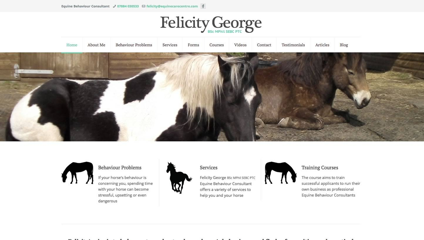 Equine Care Centre Website by Big Decision