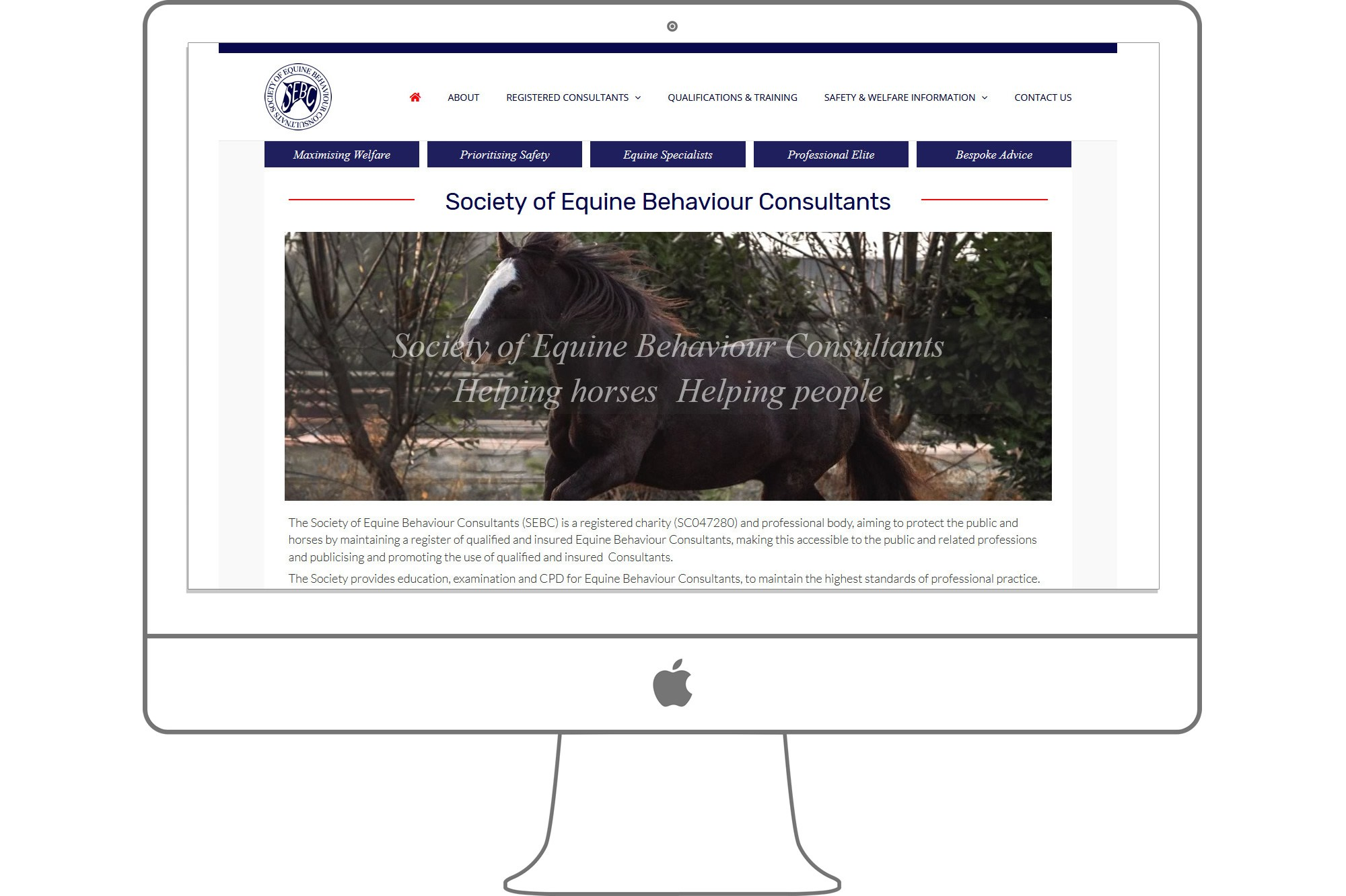 Society of Equine Behaviour Consultants