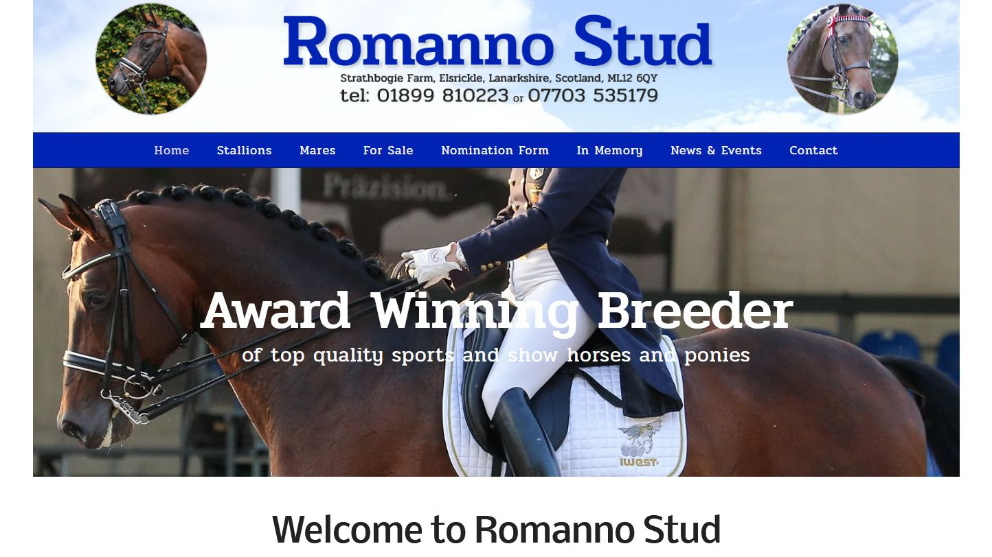 Romanno Stud Website By Big Decision