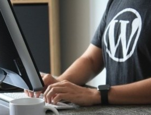 WordPress Insights #1