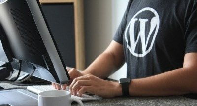Wordpress Insights